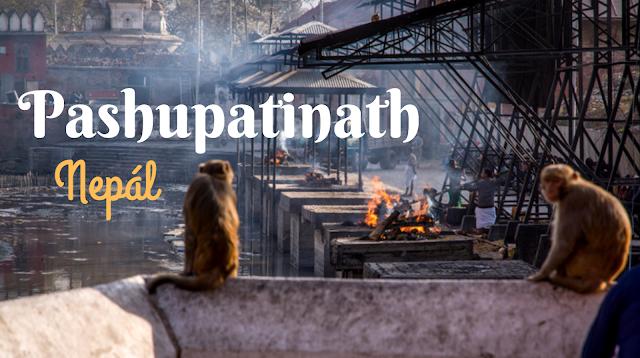 ashupatinathNepalKathmanduspalovanikatkacestuje-1